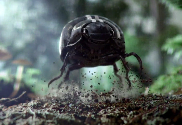 Video: Volkswagen Updates 'Black Betty Beetle' Commercial