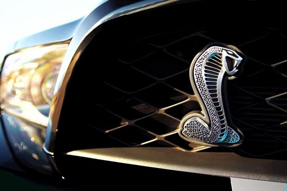 2013 Shelby GT500 Getting Bigger V8?