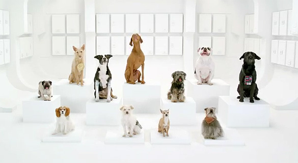 "Volkswagen Goes to the ""Barkside"" in Superbowl XLVI Commercial Teaser Video"
