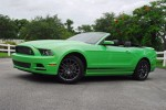 2013 Mustang Club Of America Beauty Wide Done Small