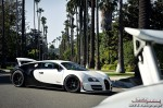 bugatti-veyron-ss-pur-blanc-a-bug-invasion-in-beverly-hills-2