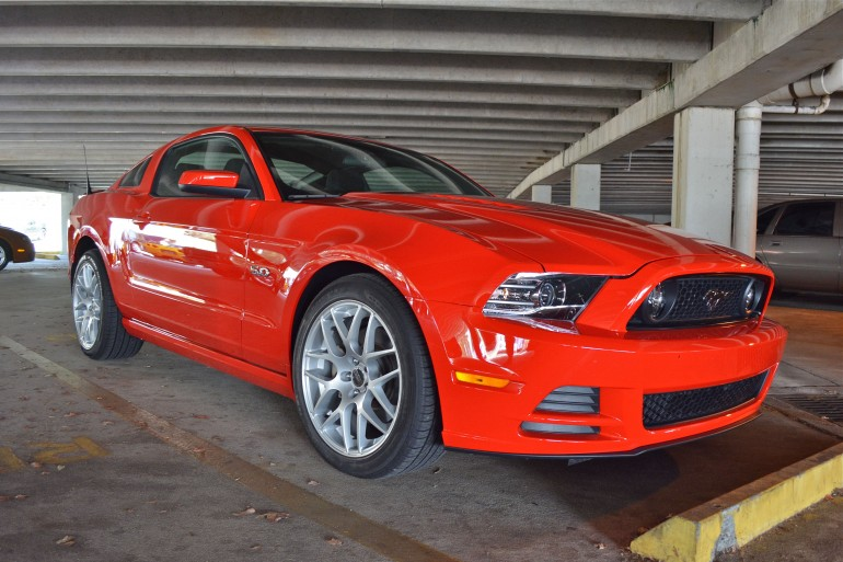 Freds 2013 Mustang 50