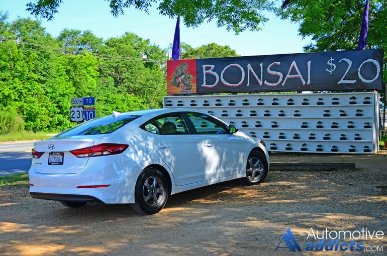 2017-hyundai-elantra-eco-bonsai-tree-1