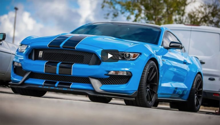 automotive addicts shelby gt350